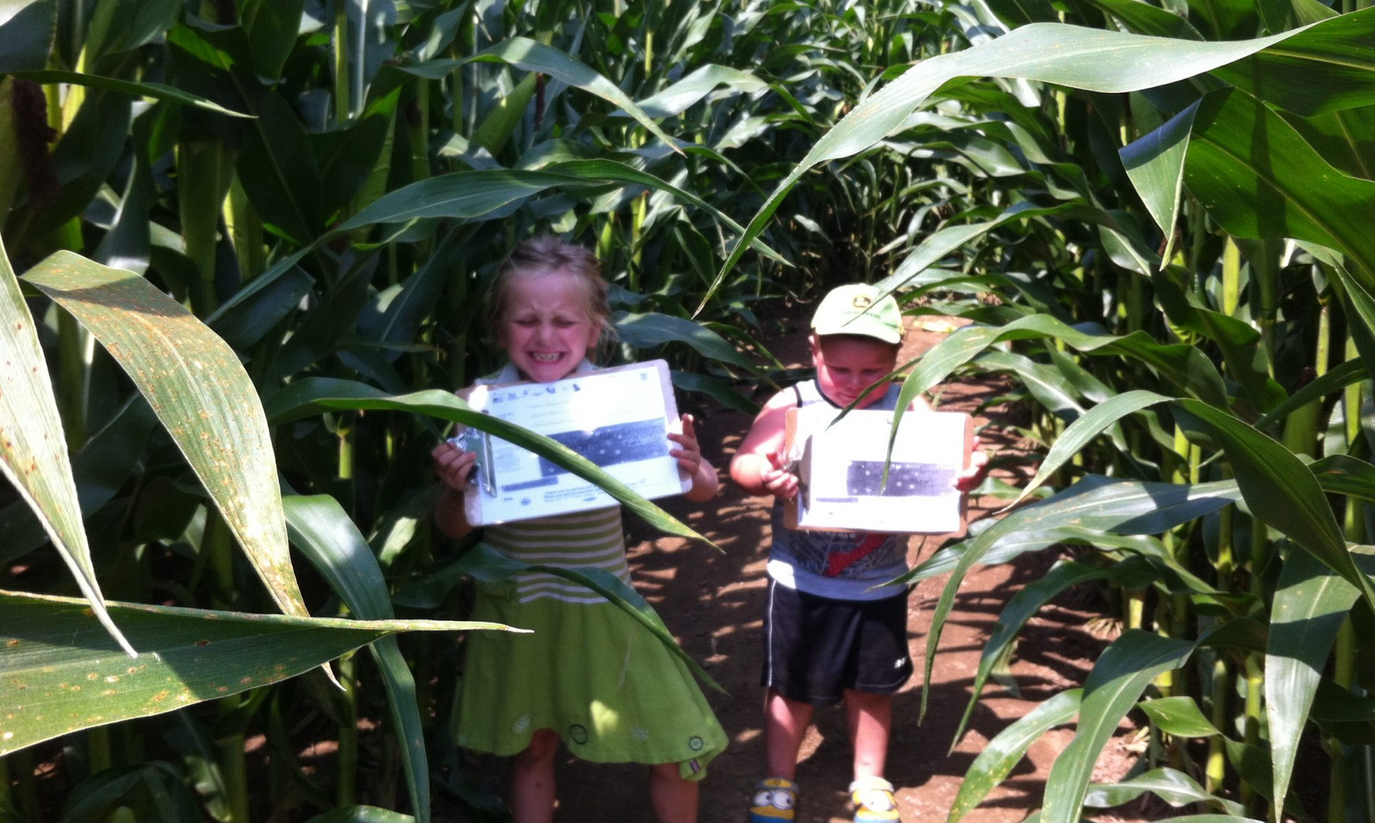 The Hanes Corn Maze & Tiny Shop Bakery